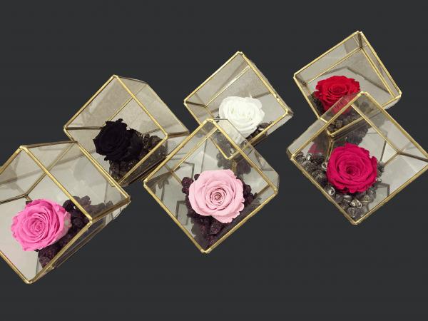 Cub de sticla cu margine aurie si trandafir criogenat
